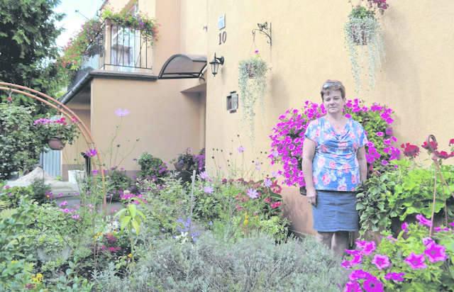 W ogrodzie pani Małgorzaty Czerwińskiej jest bajecznie. Kolorem i zapachem zachwycają  rośliny kwitnące