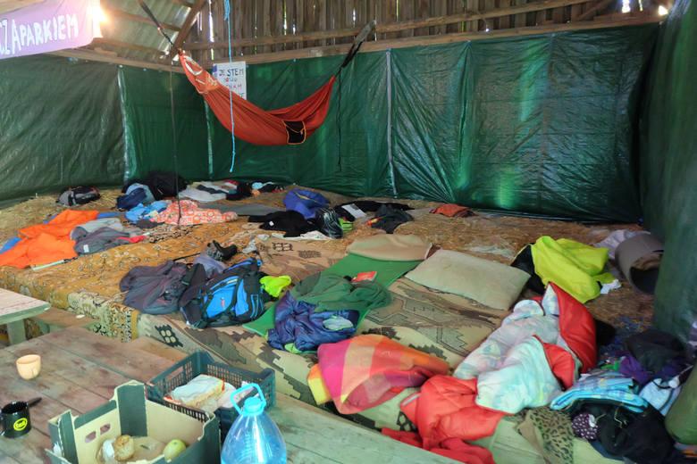 Zamieszkali w obozie w środku lasu. Bronią puszczy