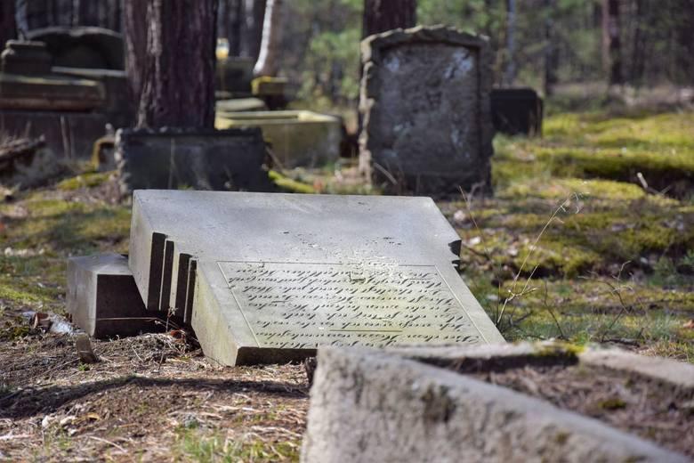 Takich miejsc jak to w woj. lubuskim jest jeszcze wiele. Na ten dawny niemiecki cmentarz ewangelicki natknęliśmy się przez przypadek podczas jednej z