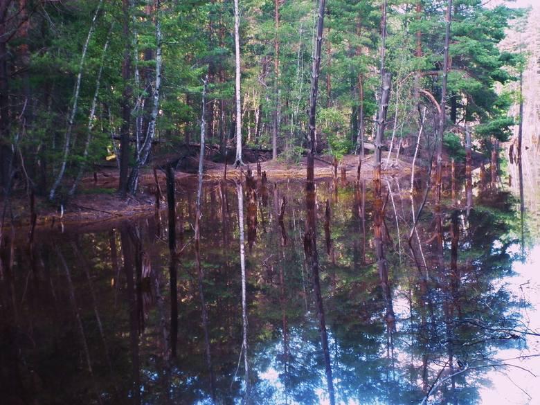 Kolorowe jeziora w okolicy Łęknicy i Trzebiela to z jednej strony turystyczna atrakcja. Z drugiej pamiątka po przeszłości