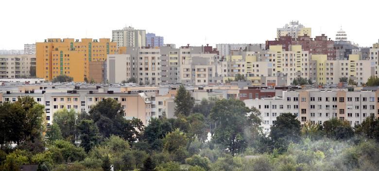 Kozanów, Maślice, a może Huby. A jeśli już znamy osiedle, to przy których ulicach mieszka najwięcej ludzi, zastanawialiście się kiedyś nad tym. Odpowiedź