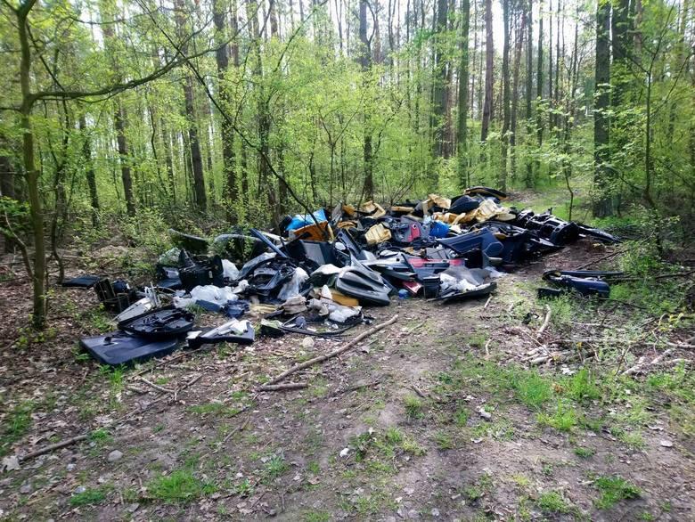 W rejonie ulicy Chojnickiej w Poznaniu nieznani sprawcy wyrzucili w lesie całe mnóstwo worków, w których znajdowały się części z demontażu samochodów.