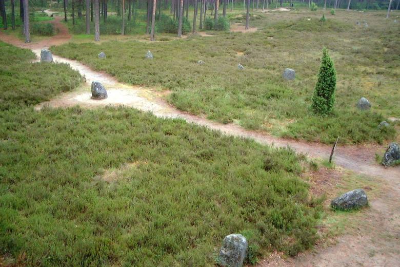 Kamienne kręgi we wsi Odry to miejsce, które nazywane jest polskim Stonehenge. W sosnowym lesie znajduje się stare cmentarzysko, na którym rozmieszczonych