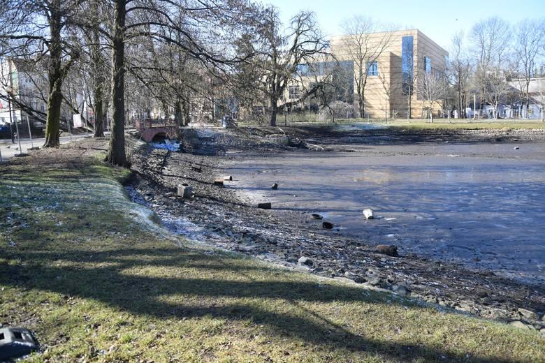 Woda została spuszczona ze stawu w Parku Róż, bo akwen ma zostać odmulony i oczyszczony.