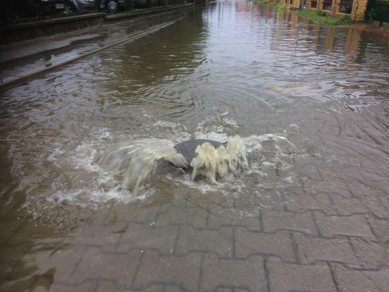 We wtorek w godzinach porannych nad naszym regionem przeszła ogromna ulewa. Trudna sytuacja jest m.in. w Sarbinowie, gdzie doszło do licznych podtopień. Strażacy wypompowują wodę z zalanych ulic i posesji. Zdjęcia otrzymaliśmy od naszego Internauty na alarm@gk24.pl<br /> <br /> W strefie...