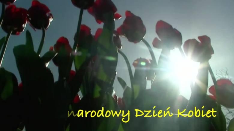 Dzień Kobiet Życzenia, wierszyki oraz kwiaty. O tym warto pamiętać 8 marca.8 marca Święto Kobietwięc życzenia składam tobie.Dużo szczęścia i radościa