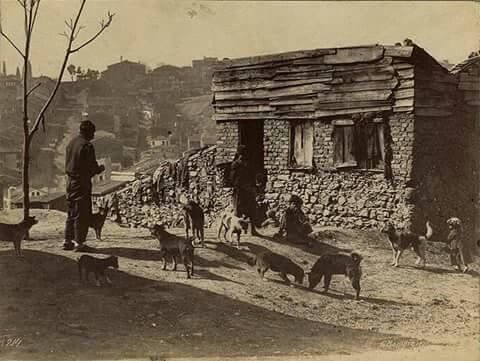 Dom w Tatavli - dzielnicy, w której dorastał Zacharow