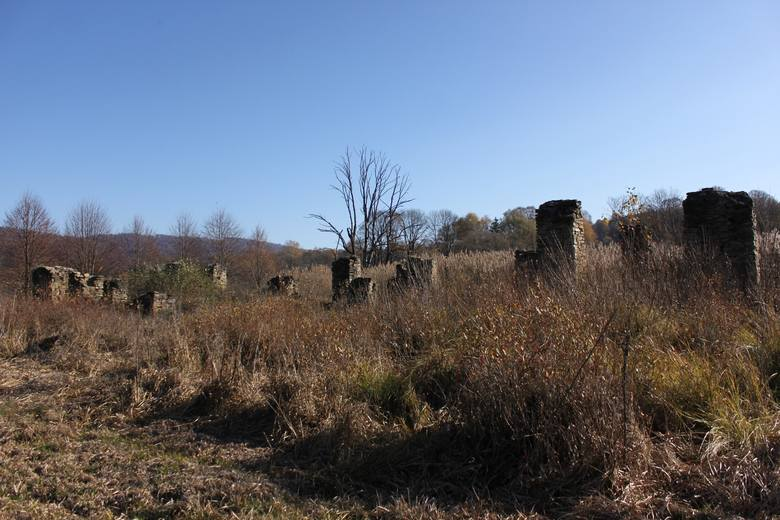 Tyle po wysiedleniach rdzennej ludności w 1946 i 1947 roku zostało po ludnej wsi Tworylne.