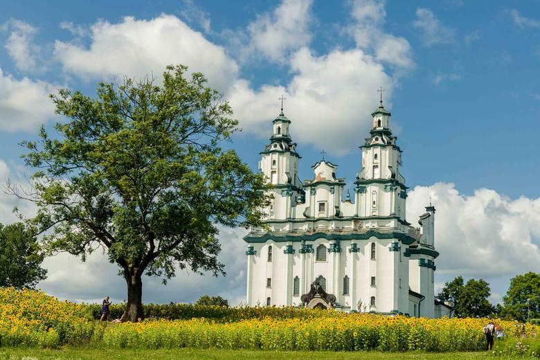 Białystok w ubiegłym roku wzbogacił się o pięć i pół hektara łąk kwietnych. Stały się one oficjalną wizytówką miasta<br />