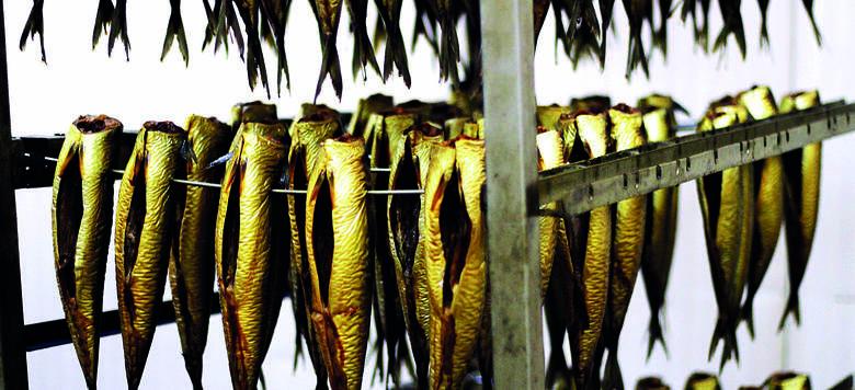 Eryby.pl. 30 lat temu oferowali śledzie z żuka. A dziś? Sprzedają świeże ryby i sushi przez internet