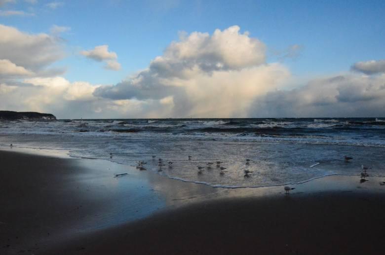 Spacer po sopockiej plaży. Zima na Pomorzu. Wybraliśmy się na spacer nad morze [ZDJĘCIA]