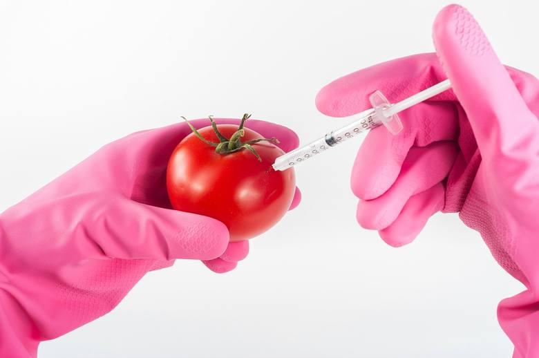 Uprawy GMO w 26 krajach. Wzrósł ich areał
