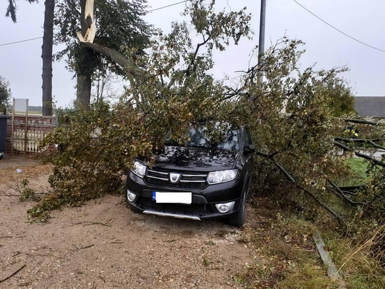 Wichura w Podlaskiem. Silny wiatr łamał drzewa. Na drogach doszło do wielu poważnych wypadków [ZDJĘCIA] 18.09.2019