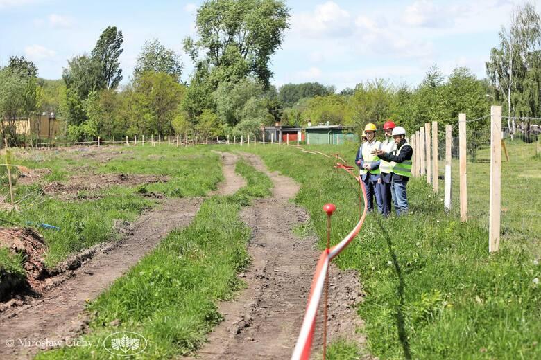 Trwa remediacja stawu Kalina w Świętochłowicach. Warto zobaczyć zdjęcia, jak wygląda oczyszczanie zbiornika