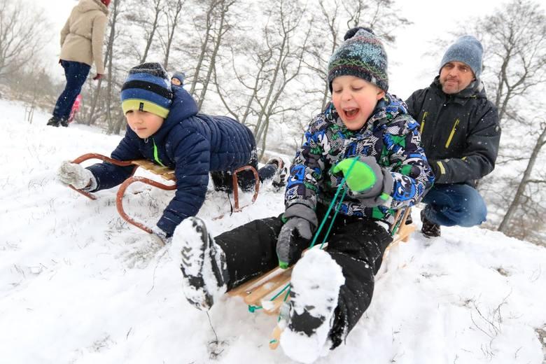 Ferie 2019 w Toruniu. Zimowa przerwa w nauce oznacza dla najmłodszych jedno – szaleństwo szkolnych ferii. W Toruniu przy tej okazji nie można narzekać