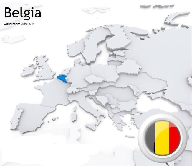 Ceny najpopularniejszych paliw w Belgii:Benzyna Pb95 - 1,46 euro/litr czyli około 6,21 zł/litr.Olej napędowy – 1,49 euro/litr czyli około 6,34 zł/litrLPG