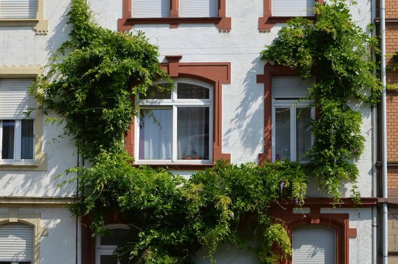 Jeśli szukasz domu, mieszkania w okazyjnej cenie, sprawdź aktualne licytacje komornicze. To szansa na kupno nieruchomości po okazyjnej cenie.Przygotowaliśmy
