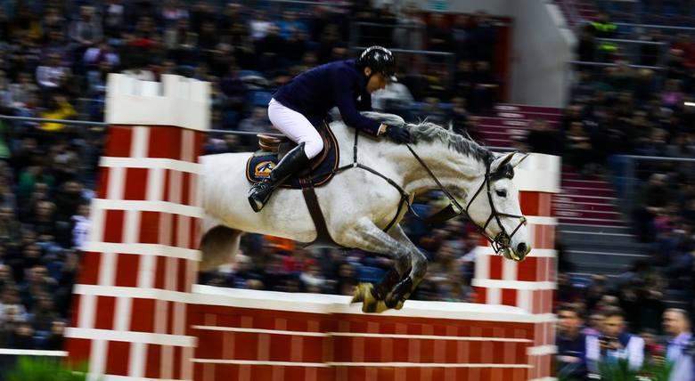Ujeżdżenie drużynowo1. Niemcy2. USA3. Wielka BrytaniaUjeżdżenie indywidualnie1. Jessica von Bredow-Werrndl (Niemcy), koń TSF Dalera2. Isabell Werth (Niemcy),