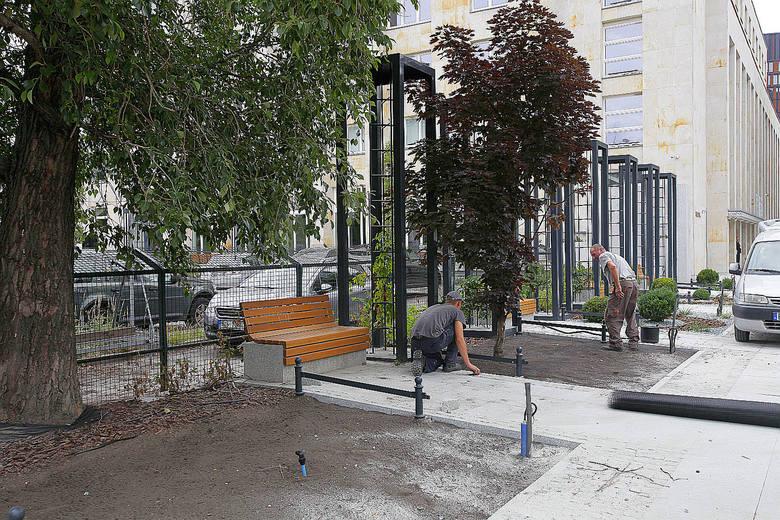 Kończy się remont Traugutta w Łodzi: ulica wygląda pięknie, jest pełna zieleni prawie jak park