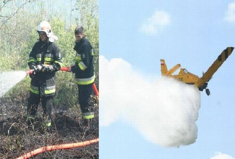 Pożar lasu w Piaseczni