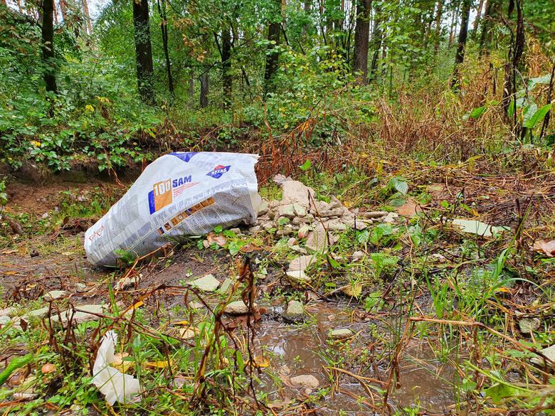 Regipsy, płytki i cement. Ktoś wyrzucił śmieci do lasu (wideo, zdjęcia)