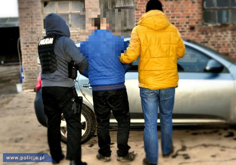 Poznań. Kradli auta i uprawiali konopie (zdjęcia)