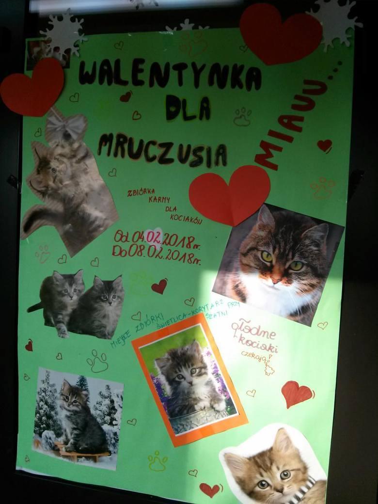 Walentynki dla Mruczusia w SP nr 2 w Łowiczu [ZDJĘCIA]