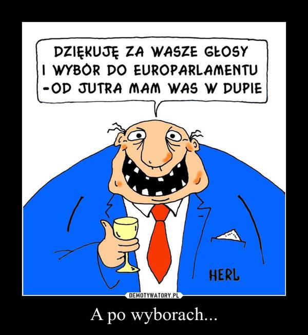 Eurowybory 2014 na demotywatorach: Zobacz jak zareagował internet!