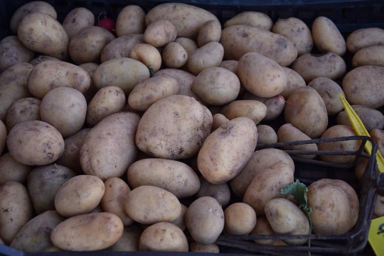 Ziemniaki młode - już od 1 zł za kilogram