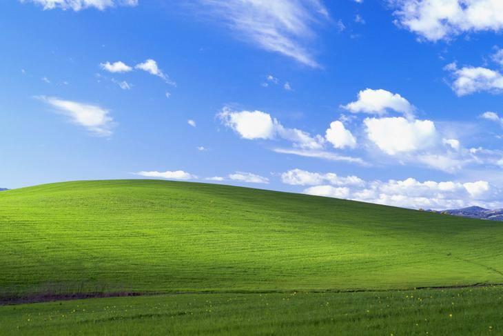 """Kultowa tapeta systemu Windows XP to nie wytwór wyobraźni! Jedna z najbardziej znanych fotografii świata nosi tytuł """"Bliss"""" - w polskiej"""