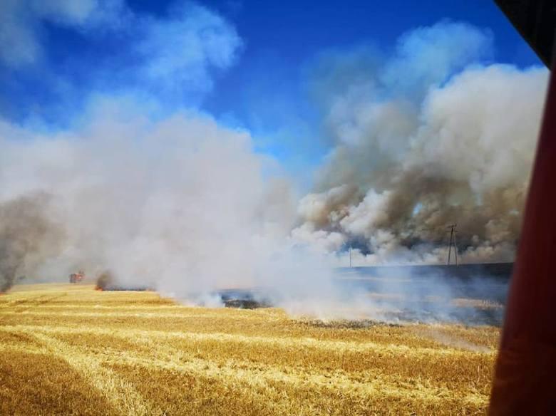 Akcja strażaków trwała 17 godzin i zakończyła się 1 lipca przed godziną 7. Udział w akcji wzięło ponad 30 zastępów jednostek z całej Wielkopolski. Strażacy