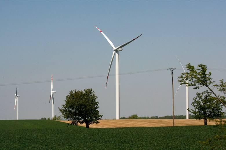 Pod Legnicą rusza elektrownia wiatrowa Taczalin. Dziś pokazali pierwsze turbiny