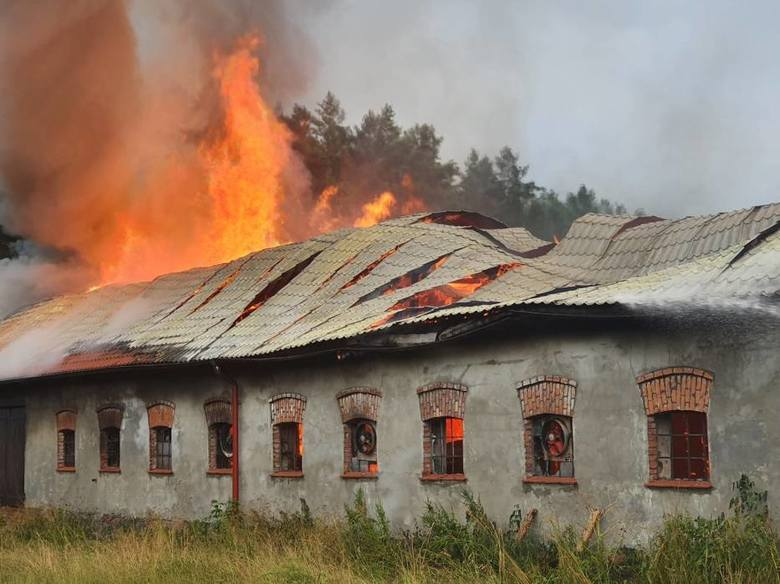 Pożar stajni w gminie Kołczygłowy 20.07.2020. Ogień prawdopodobnie był wynikiem uderzenia pioruna. Zdjęcia