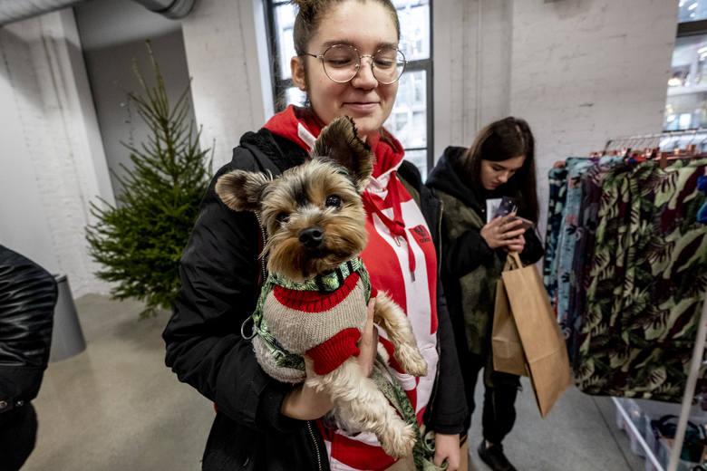 Miłośnicy psów spotkali się na kolejnej edycji Łapa Targ, poświęconej czworonogom. Prezent pod choinkę dla pupila? Można było go znaleźć właśnie w Concordii