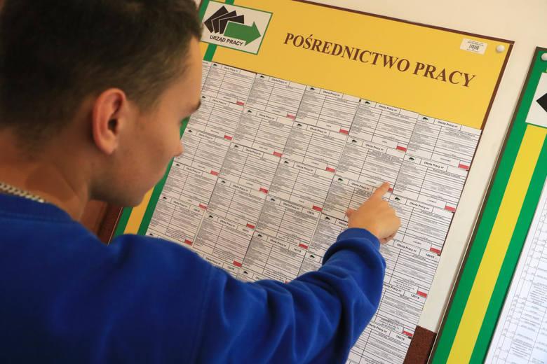 Wiele toruńskich firm zgłasza się do Powiatowego Urzędu Pracy w Toruniu, aby znaleźć pracowników. Z ofert znajdujących się w bazie PUP na terenie Torunia,