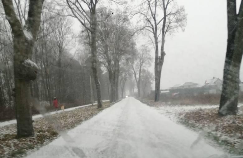 Okolice Łabiszyna.