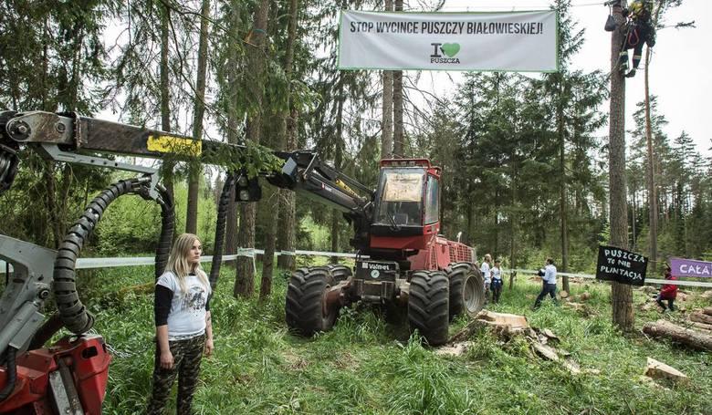 Trybunał Sprawiedliwości zakazał dalszej wycinki drzew w Puszczy Białowieskiej. Za niezastosowanie się do orzeczenia, na Polskę zostanie nałożona kara