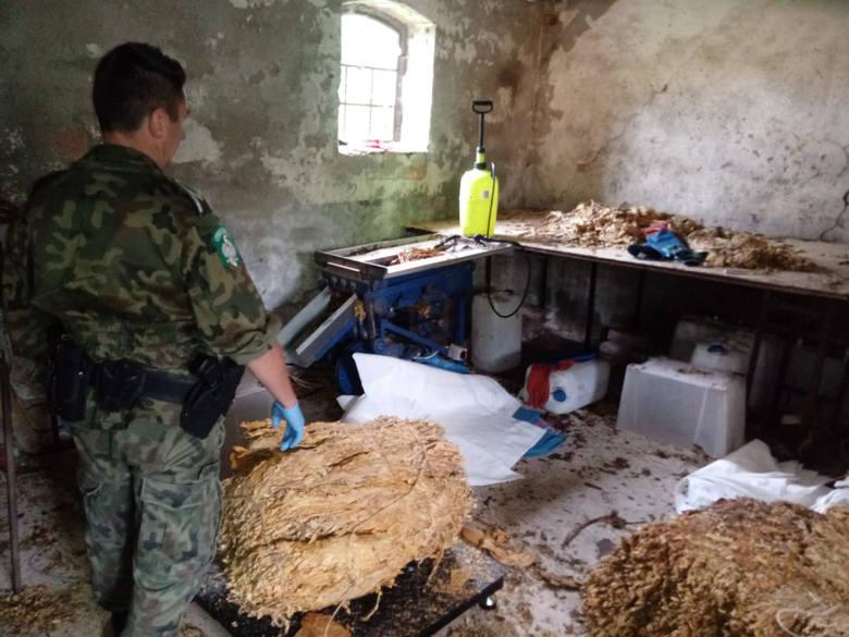 Zorganizowaną grupę przestępczą mającą na celu popełnianie przestępstw karno-skarbowych rozbili 9 sierpnia w powiecie sławieńskim funkcjonariusze z Placówki
