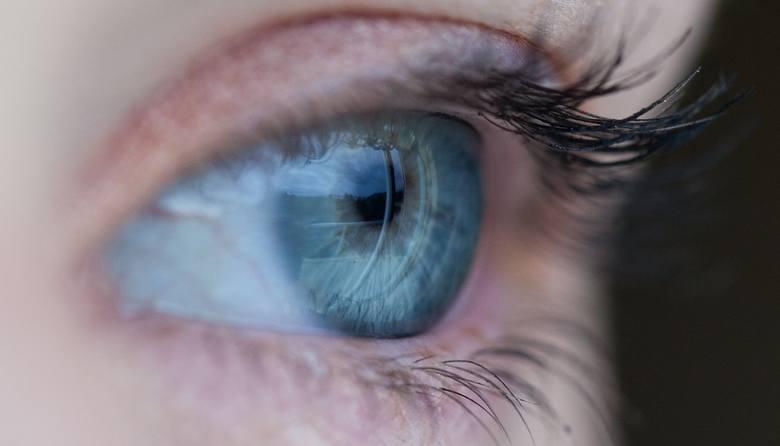 Nużeniec często zagnieżdża się w okolicach oczu, powodując nawracające infekcje, takie jak np. gradówka.
