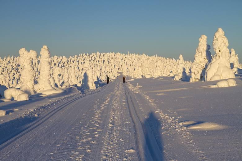 Finowie wierzą, że Święty Mikołaj mieszka na północy ich kraju, a dokładnie na wzgórzu Korvatunturi. Nie trudno zgadnąć, ze w okresie zimowym nie brakuje
