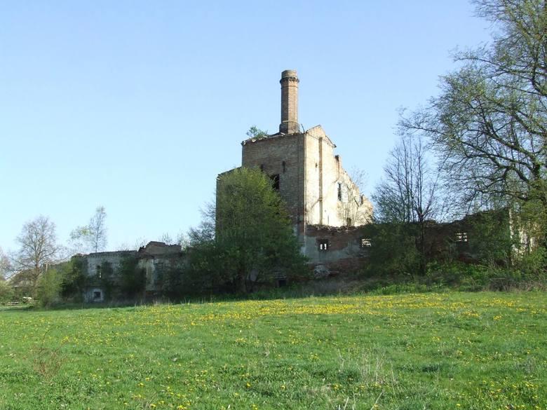 W 1859 folwark Jeżewo wraz z 850 ha kupił Jan Gloger, który założył tu sad, w którym wyhodował jedną z pierwszych nowoczesnych odmian jabłoni, odporną