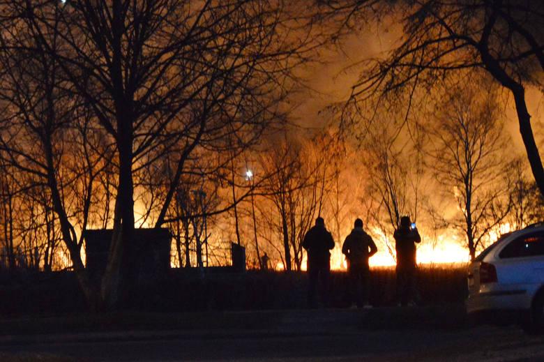 Do pożaru traw doszło w czwartek nad Sanem, za stadionem Polonii Przemyśl. Do akcji wyjechały 3 zastępy strażaków. Spaleniu uległy 3 hektary traw.To