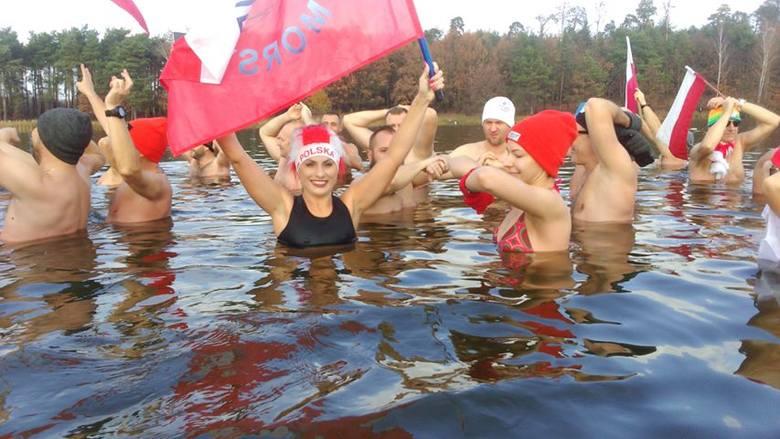 Morsy podczas poniedziałkowej kąpieli w zalewie w Siczkach koło Jedlni Letniska.