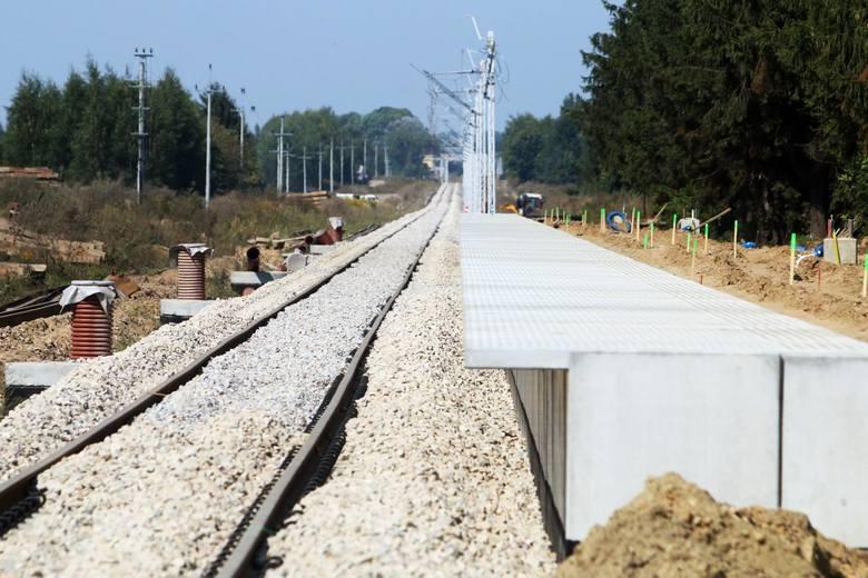 Firmy, ukarane przez UOKiK wzięły udział w przetargu organizowanym przez PKP PLK na dostawy drewnianych podkładów kolejowych