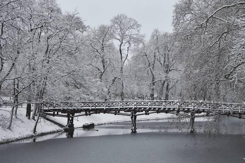 Pogoda na wtorek. Prognoza pogody dla Wrocławia 26.01.2021