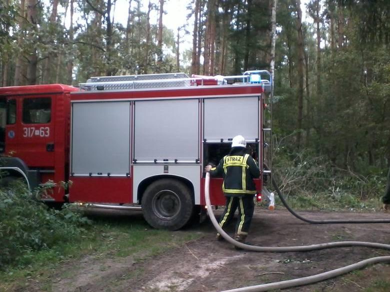 Do walki z pożarami leśnicy na terenie RDLP mają m.in. do dyspozycji sieć 43 punktów obserwacji naziemnej, 3 samoloty patrolowo-gaśnicze, bazy sprzętu