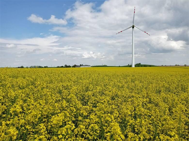 Pogoda jest głównym czynnikiem opóźniający decyzję rolników o przesłaniu wypełnionych wniosków w aplikacji eWniosekPlus. Jeszcze na początku maja obawiali