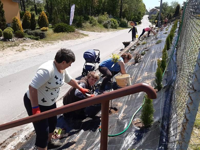 Społeczna akcja mieszkańców Borowego Młyna
