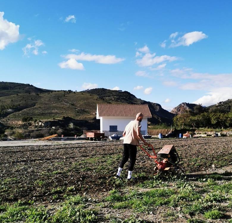 """Można """"rozerwać"""" się przy pracy na roli przy uprawie batatów. Zawodnik Lotto Soudal jest znany z ekstrawaganckich pomysłów."""