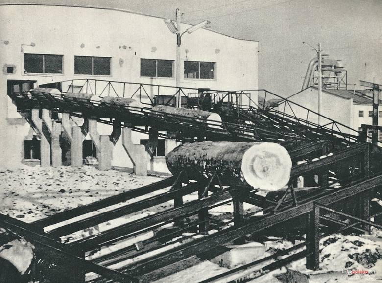 1963 r. Zakłady Przemysłu Drzewnego w Rzepedzi<br />